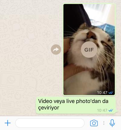 sihirli-elma-whatsapp-gif-10.png