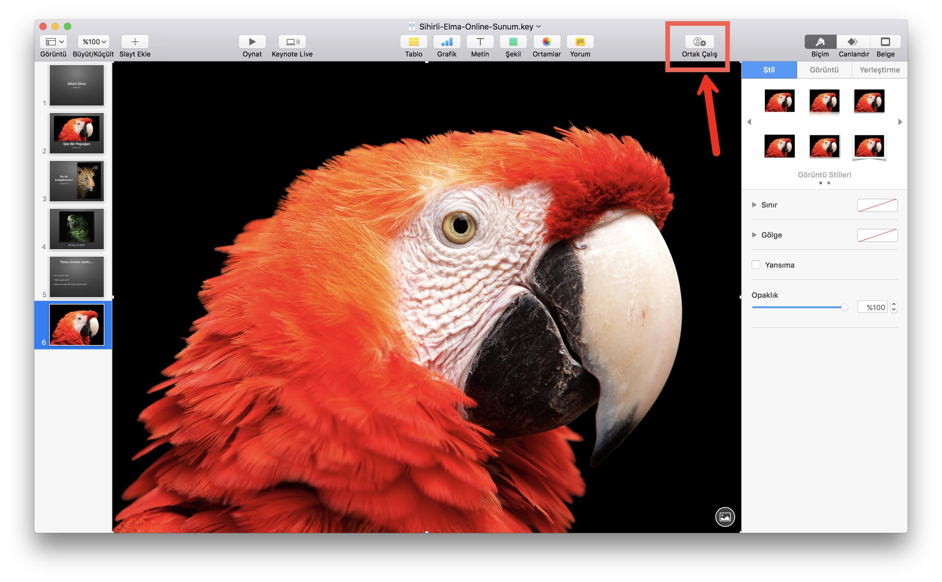 keynote-embed-2-mac.jpg